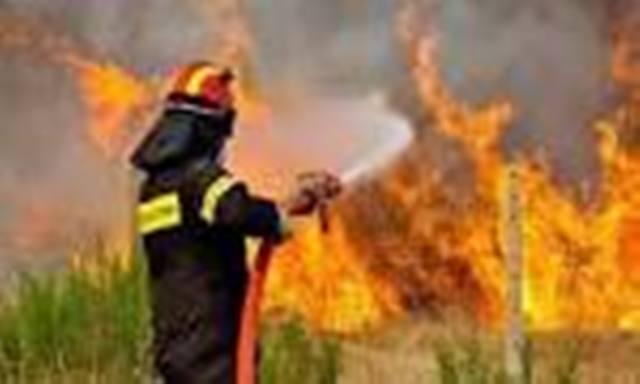 Κλειστή η Εθνική οδός Τρικάλων - Καρδίτσης λόγω πυρκαϊάς